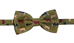 Cow on Green Bowtie